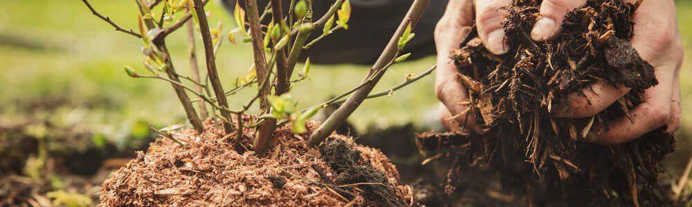 garden-mulch-082018